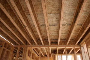 I-beam floor joists. Picture is from this website.